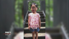 Vigil for 4-year-old hit-and-run victim; police search for driver