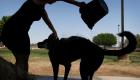 Heat Wave To Threaten 23 Million Americans