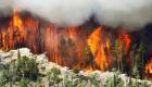 Utah Republican: Blame Lack Of Logging For Major Wildfire