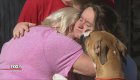 Puppy saves family from fire